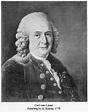 Linnaeus - definition - What is