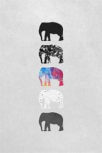 fondos de elefantes   Tumblr
