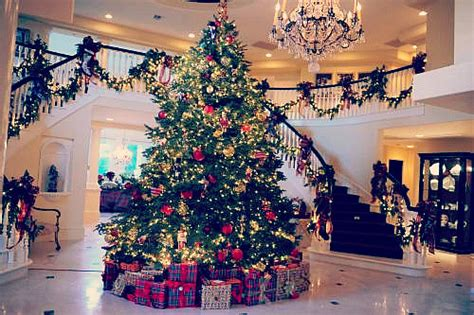 christmas tree on tumblr image 2382529 by maria d on