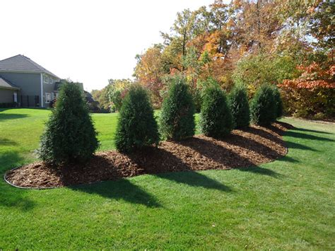 backyard berm pictures of berms in landscapes landscaping professionally installed berm outside