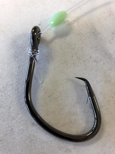 grouper warsaw leader outfitters bottom