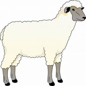 Free Sheep Clipart Pictures - Clipartix