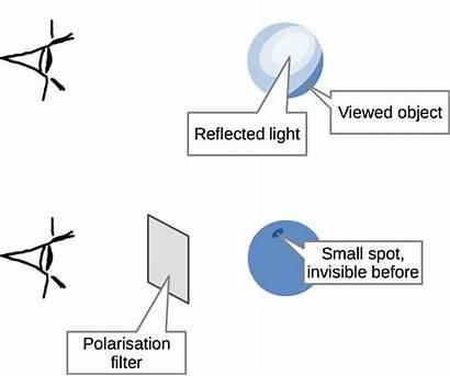 Audio Optimization Filter Ultraviolet Ect Reflected Obj