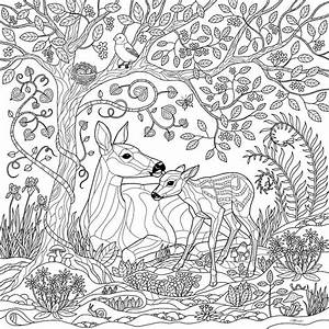 Realistic Animal Coloring Pages Deer On A Grass - Coloring ...