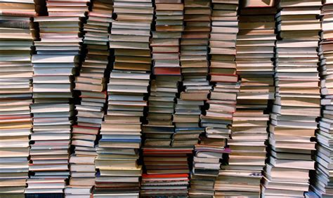 libri in libreria 5 libri ambientati a mantova panorama