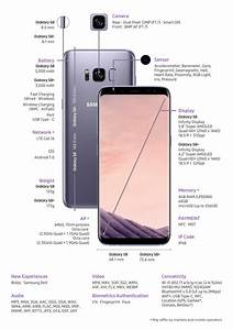 Discover New Possibilities With The Samsung Galaxy S8 And
