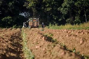 Michigan agri-business to Trump: support international ...