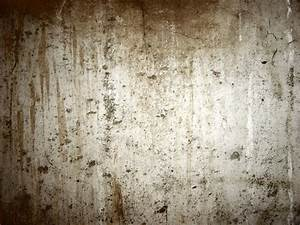 Tasteful Old Concrete Basement Textured Wall For Rustic ...