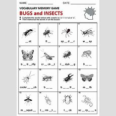 Bugs And Insects  All Things Topics