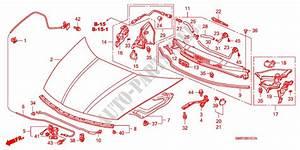 Engine Hood  Rh  For Honda Cars Civic 1 8 Base 3 Doors