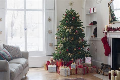 christmas tree alive
