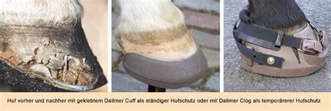 hufschuhe nagellose alternative fuer den schutz der hufe