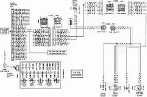 Ford F53 Fuel Pump Relay Location - Wiring Diagrams Image Free