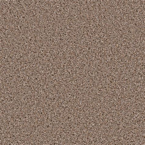 trafficmaster carpet tiles home depot trafficmaster carpet sle hideaway i color sound