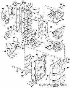 intake manifold 1986 evinrude outboards 150 e150stlcdc With diagram of 1986 e70elcdc evinrude intake manifold diagram and parts