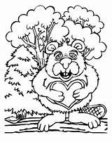 Coloring Pages Beaver Beavers Printable Popular Keywords Similar sketch template