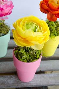 Flower, Pot, Craft, U0026, Centerpiece