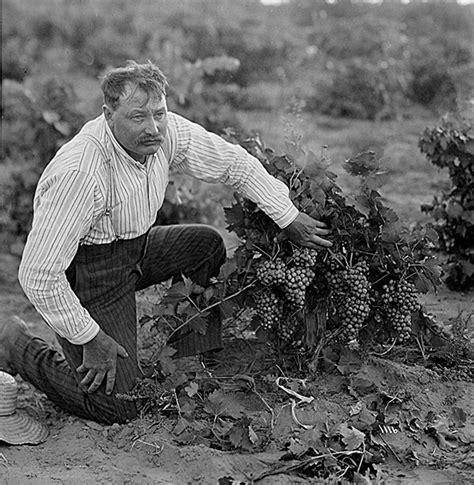 history  yakima valley wine washingtons real wine country