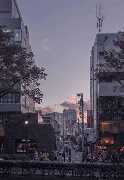 sunset  omotesando tokyo octava   tokyo