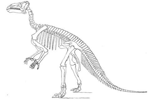 pulling   curtain  dinosaur science science