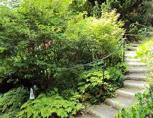 Explore portland oregon leach botanical gardens for Leach botanical gardens