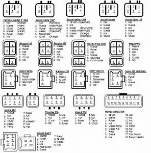 Teknik Motorindo Prabumulih  Daftar Pin Cdi Dan Panjang