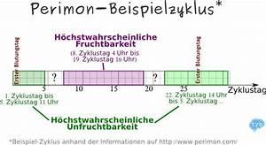 Zyklus Eisprung Berechnen : perimon paradoxon ~ Themetempest.com Abrechnung