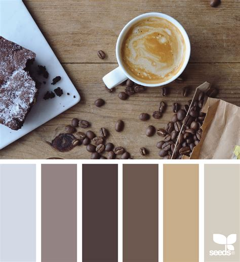 coffee browns  future home brown paint color schemes color pallets