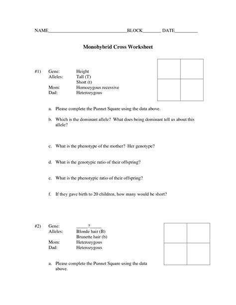 Worksheet Monohybrid Cross Worksheet Grass Fedjp Worksheet Study Site