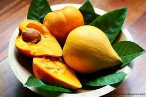 Mango Fruit Egg Fruit The Crucian Contessa