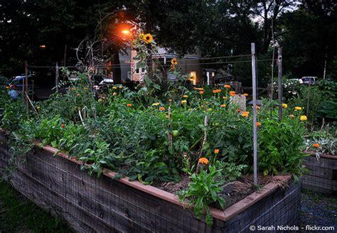 Garten Hochbeete Selber Bauen by Ein Hochbeet Aus Holz Selber Bauen Garten Hausxxl