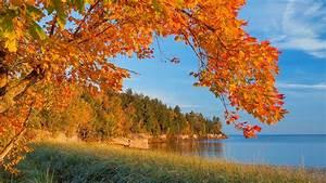 Bilder Herbst Kostenlos : hd herbst hintergrundbilder hd hintergrundbilder ~ Somuchworld.com Haus und Dekorationen