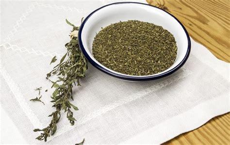 sarriette cuisine zoom sur la sarriette herbe pour grillades le journal
