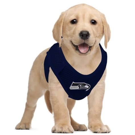 seattle seahawks pet gear seattleteamgearcom