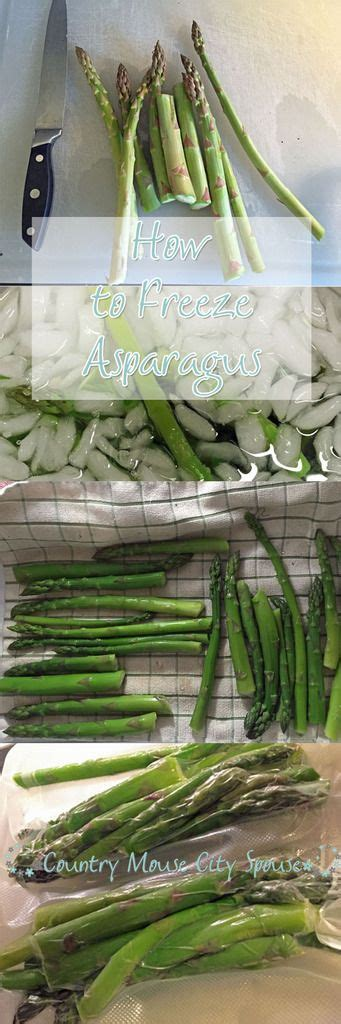 how to preserve asparagus 25 best ideas about how to freeze asparagus on pinterest freezing asparagus blanching