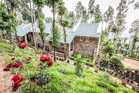 munnar cottages with kitchen cottage in munnar guesthouse for rent in munnar 3414