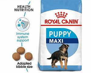 Royal Canin Maxi Junior : royal canin maxi junior food 4kg my pet warehouse ~ Buech-reservation.com Haus und Dekorationen