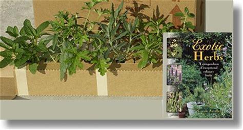 indoor herb garden kits canada 28 images indoor herb