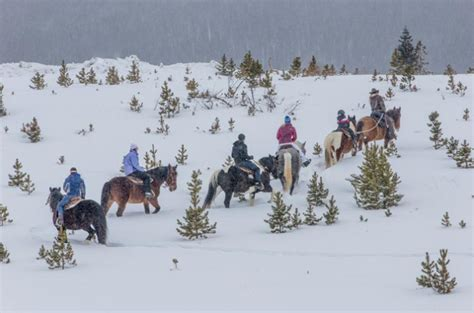 riding horseback denver winter near trail divide colorado hiking pure magic onlyinyourstate