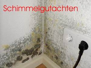 Schwarzer Schimmel Wand : augsburg schimmelgutachter ulm blaubeuren senden dornstadt ehingen ~ Whattoseeinmadrid.com Haus und Dekorationen