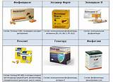 Гепатопротекторы для печени список препаратов с доказанной эффективностью