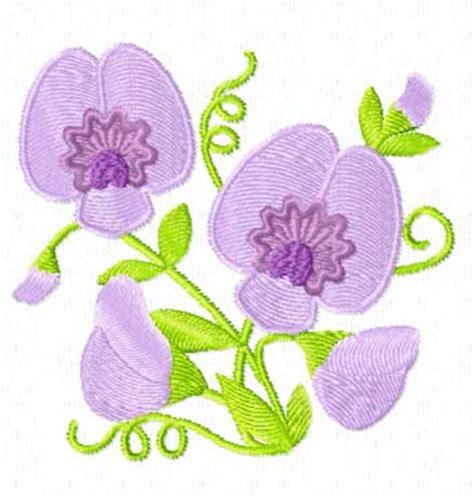sweet pea designs sweet pea flowers 12 machine embroidery designs set