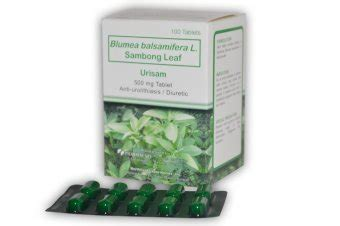 sambong mg tablet lazada ph