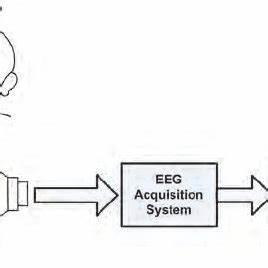 eeg signal for voluntary eye blinking condition the With eeg block diagram