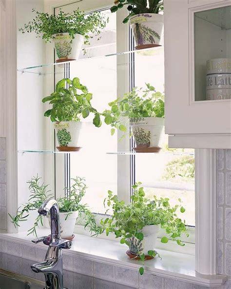 Kitchen Window For Plants by Glass Shelves White Pots Decorating W Houseplants
