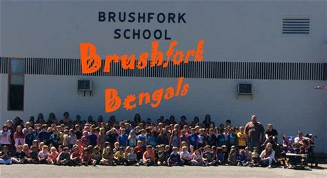 brushfork elementary home