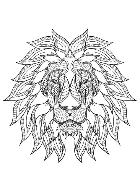 lion   color  children lion kids coloring pages