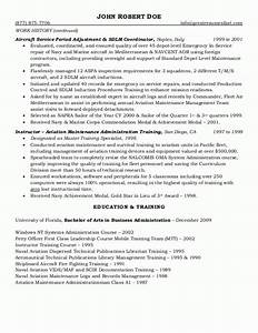 Goverment resume