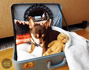 diy vintage suitcase dog bed the gold jellybean With diy dog beds for large dogs
