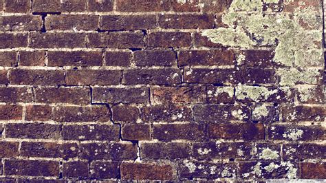 40 Hd Brick Wallpapersbackgrounds For Free Download